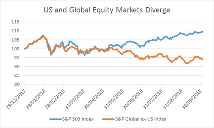 US and Global Equity Markets Diverge | Investment Management