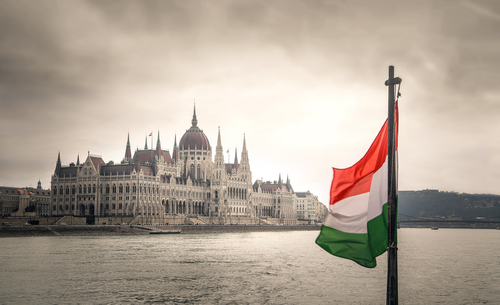 The Hungarian Financial Phrasebook